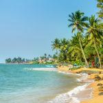 Vacances d'été en Guadeloupe